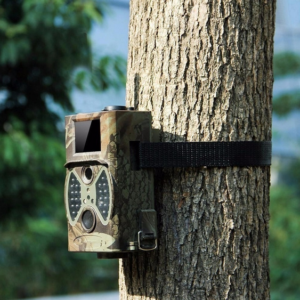 Outdoor Trail Camera with Remote