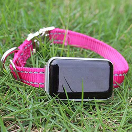 gps tracker for pets